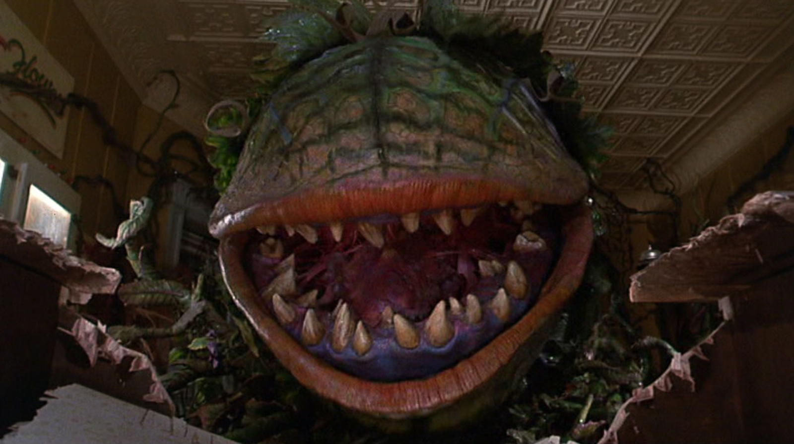 This is a still from The Little Shop of Horrors.